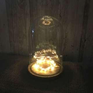 RENT: Copper Fairy Light (4m)