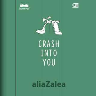 Ebook Crash Into You