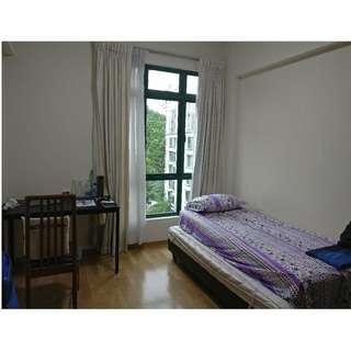 Common Room for rent near Hillview MRT