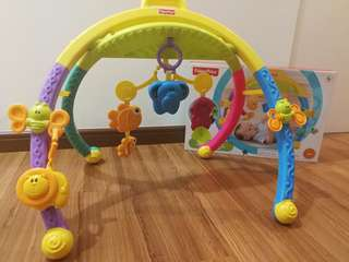 Fisher Price's Folding Activity Gym