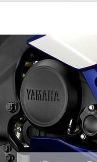 R15 v2 engine cover , crankcase cover