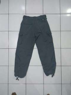 Dickies Cargo size L fit 31/32