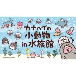 🚚 日本 卡娜赫拉 水族館