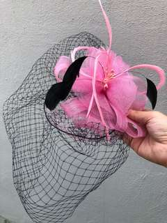 Birdcage Pink Hair Piecd