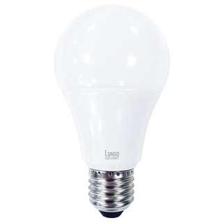 LUNGO 【韓國品牌】可調亮 LED球膽 15W 1450lm E27螺頭  4000K 柔白光 / 5700K 冷日光