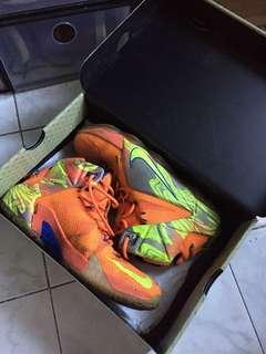 Authentic Lebron Shoes