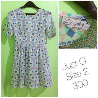 Used Once Just G Sheer Dress