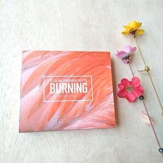 [NEW] Focallure Burning Eyeshadow Palette