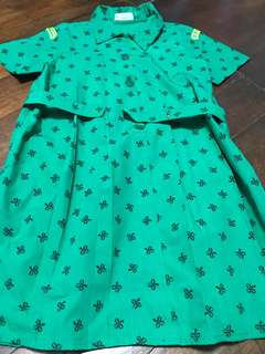 Girl scouts dress