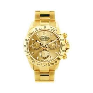 luxury watch!