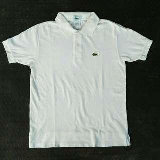 Polo shirt lacoste polo shirt murah polo shirt second