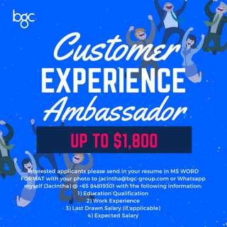 Customer Experience Ambassador (Min $1,800)