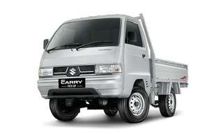 Suzuki pickup carry