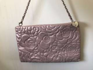 Chanel 25CM pouch