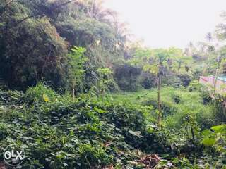 Silang farm lot for sale