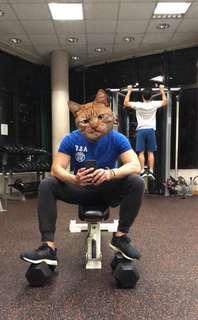 健身教練Fitness coach