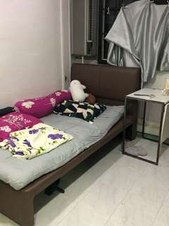 Master room for rent
