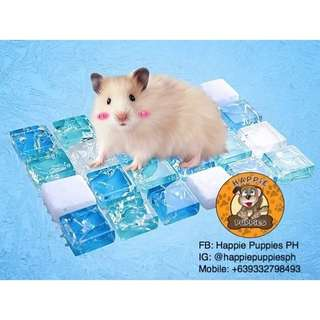 Hamster Cooling Marble Pad Mat