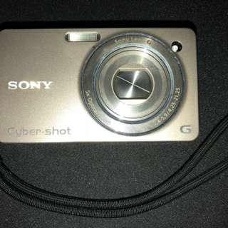Sony WX1 數位相機《香檳金》