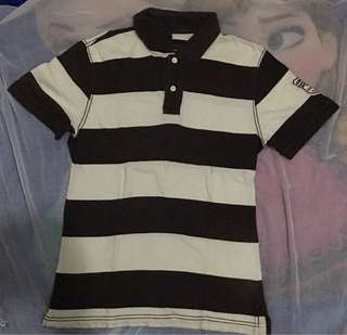BombBoogie Polo Shirt