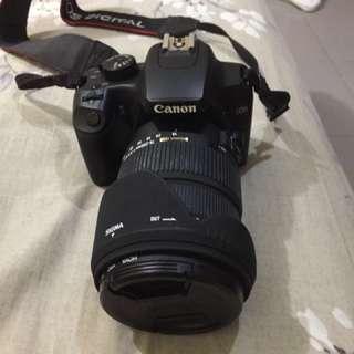 Canon EOS 1000D + Sigma 18-200 +++