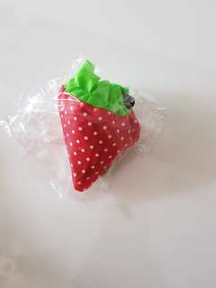 Strawberry convertible to bag