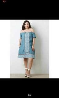 Plus Size Denim Dress