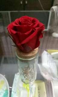 🚚 玫瑰永生花小擴香(已售,可做類似款