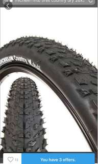 Michelin MTB tire dry