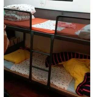 雙人床,上下鋪送床墊
