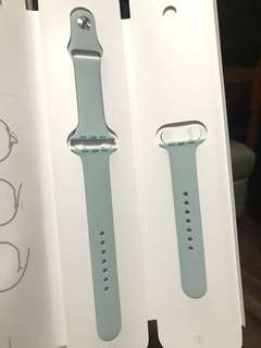 Apple Watch Sportsband 42mm in Turquoise