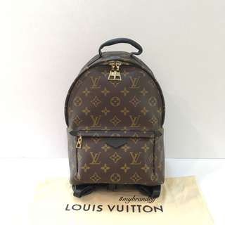 Louis Vuitton Palm Spring PM Backpack