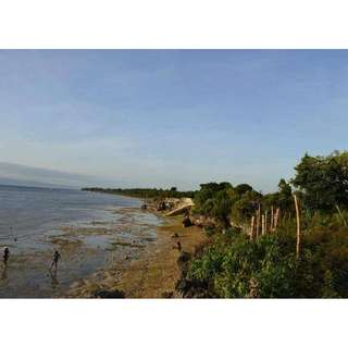 For sell titled LOT located in moalboal cebu good for resortsetc.