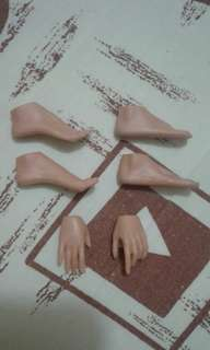 1/6 Female Foot Feet and Hands