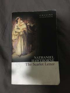 The Scarlet Letter - wo notes