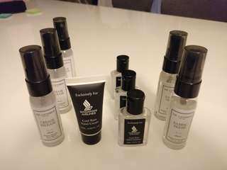 Hand Cleanser and Hand Cream - Travel size