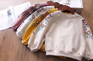 Girls Sweater Exquisite Embroidery Round Neck Sweater