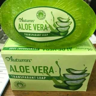 SABUN BATANG] ALOE VERA AUTUMN TRANSPARANT SOAP