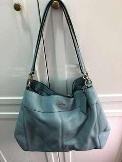 Coach bag (日本購買。少用)