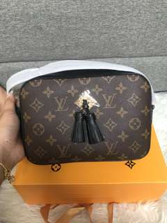 Customer's purchased, LV Saintonge Monogram Canvas