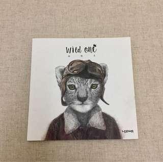 Cat Cover Plain Note Book