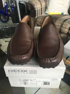 "Geox Brown ""Tito Shoes"""