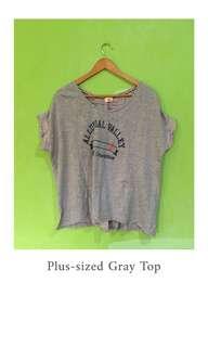 Plus-sized Gray Top