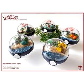Handmade Pokemon Terrarium (For a Good Cause)