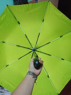 Double Coated Umbrella Unisex