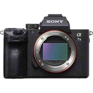 Sony A7III, A7M3, A6500 body untuk di sewa