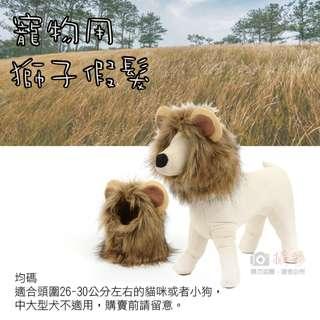 寵物用 獅子假髮 貓咪狗狗搞笑獅子頭套頭飾髮飾 防寒 變裝趴扮萌扮兇扮酷 獅子頭帽子魔術貼 一秒變獅子 寵物用品