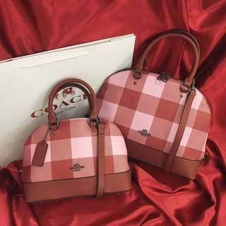 Coach bag small and big size