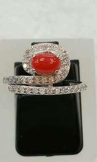 ~~~~天然紅珊瑚戒指~~~~