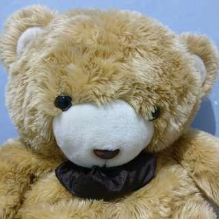 Boneka jumbo besar teddy bear beruang coklat cokelat brown doll